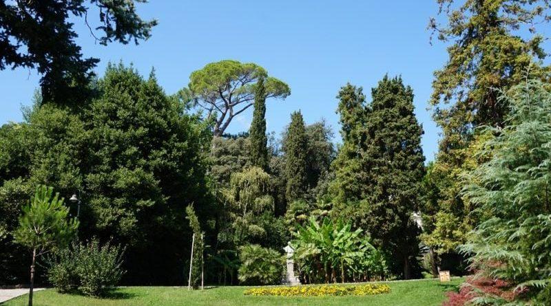 park mit der natur