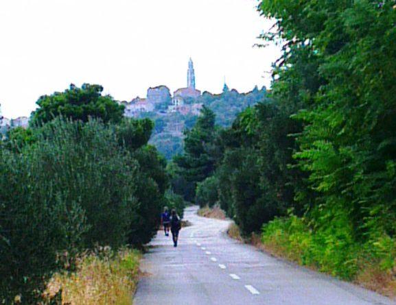 die Straße von Igrane nach Zivogosce